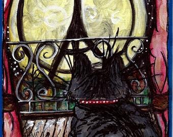 Peace. Le Meow.