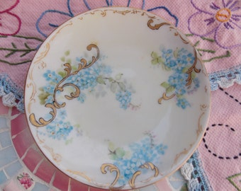 Small Hand Painted Bavaria Blue Forget Me Not Plate