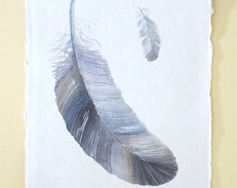 Original feather watercolour painting illustration