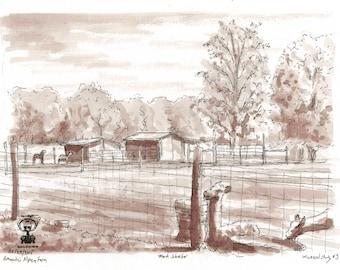 Amand'a Alpaca Farm