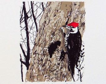 Pileated Woodpecker silkscreen print