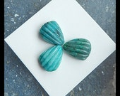 3 PCS,Carved Chrysocolla  Shell Cabochons,14x10x5mm,3.4g