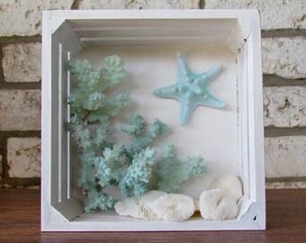Coastal Shadow Box with Coral and Starfish