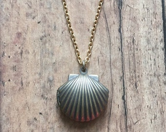 Gorgeous seashell locket