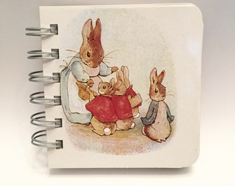 Peter Rabbit Found Paper Book 3