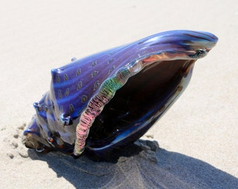 Magical sea shell, hand blown glass