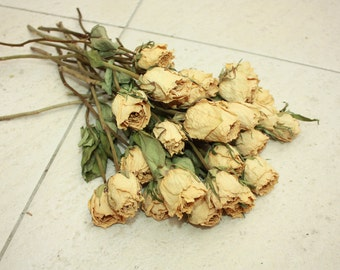 15 Natural Dry Roses - Natural Color - Roses for Weddings-Luck-Love-Romance and all other Matters of the Heart - White Roses - Dried Flowers