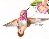 "Watercolor Print ""Pink Hummingbird"" by Sandi McGuire"