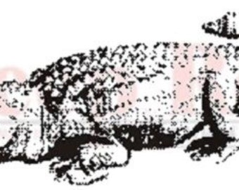 Deep Red Rubber Cling Stamp Alligator Amphibian