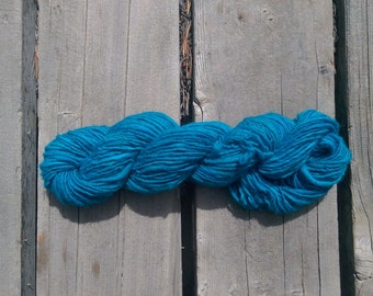 "Colorway: ""Argentine"" Handspun Merino Worsted Weight Yarn."