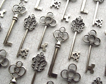 The Alice  Collection - Skeleton Key Assortment in Silver - Set of 30 Keys - Three Styles