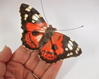 Kamehameha leather butterfly brooch