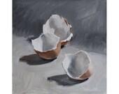 Three Shells on Gray