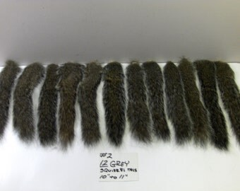 12 GRAY SQUIRREL TAILS fishing lures crafts #2