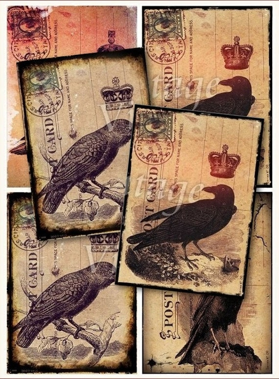 RAVEN crow...  on old postcard digital sheet download for postcards, greeting cards,tags,ATC,scrapbooking,jewelry