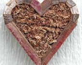 DIY Mini Small Heart Planter Living Vertical Wall Planter 7 inches by 7 inches Order by Dec 15th for Christmas Delivery