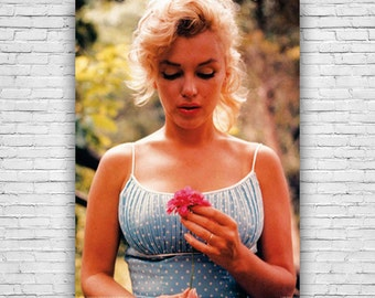 Marilyn Monroe, American Popular Culture Icon, Beautiful Flower Color Photography Poster
