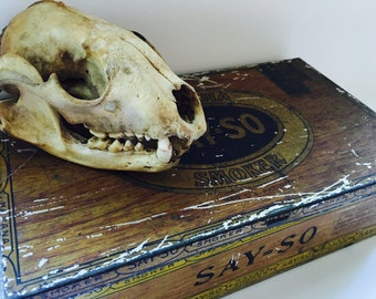 Tin Cigar Box