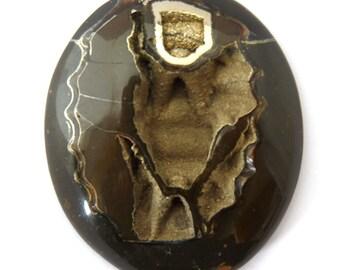 Ammonite with Pyrite Designer Cab Gemstone 42.1X50.1X9.4 mm 122.5 carats Free Shipping