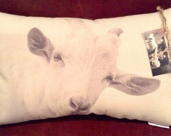 Goat Pillow / Mr. white