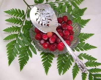TOMATO Server, CRANBERRY Server, Tomatoes, Cranberries, Holiday Canape Server, Vintage Silver Plated, Southgate by Wallace, 1937, Under 30