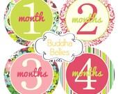 Baby Month Sticker, Monthly Stickers, Baby Stickers, Baby Milestone Sticker, Photo Prop Baby Shower 12 Month Stickers Baby Girl - G178
