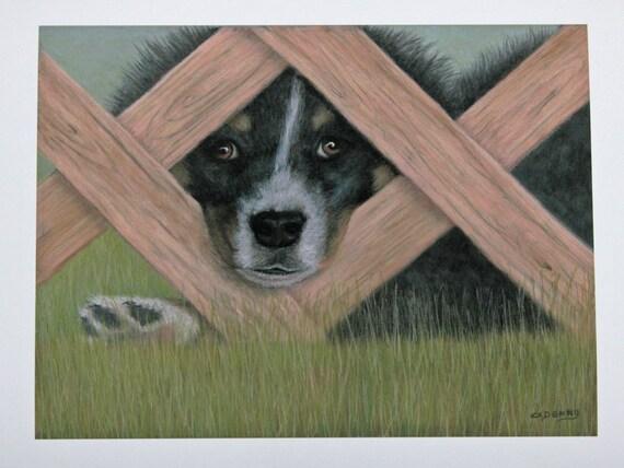 Fine Art Print, dog art print, Border Collie art, Puppies, Dog paintings, signed art print, Giclee print, animal art, pet portrait