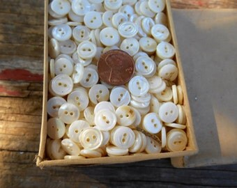 fresh water pearl buttons 10 gross 2 hole 16 line NOS