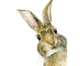 Watercolor Rabbit, Rabbit Print, Pooka Print, Jackrabbit Print, Rabbit Art