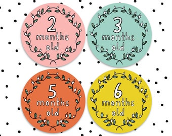 12 x Extra Large Milestone Stickers - Baby Stickers for Monthly Milestone Bodysuit Photos - Monthly Baby Stickers - Ages 1-12 months