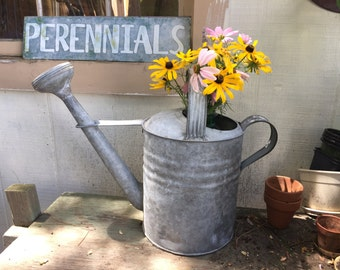 Vintage Galvanized Steel Watering Can with Spout