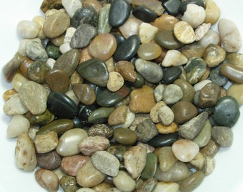 Multi color River Pebbles | natural colors | decorative | vase filler | aquarium rocks | garden rocks | fountain rocks | 32 oz. bag