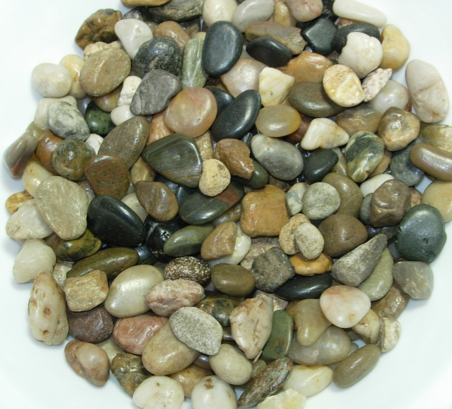 multi color river pebbles natural colors decorative vase