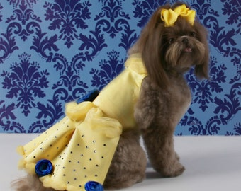 SPECIAL OCCASION:  Regal Royal & Yellow Satin Dog Dress