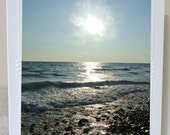 SALE CARDS, Beach Boken Blank Photo Greeting Cards, Harbor Seal Photo Note Cards Sale