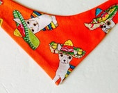 "Dog Bandana Orange Chihuahua Print Ready to Ship, Fits 10""-12"" Neck"