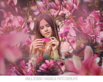 Magnolia Photo Overlays for Photographers