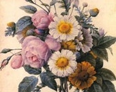 The Art of Stitch Cross Stitch Chart, Flowers by Pierre-Joseph Redoute, Gorgeous Floral
