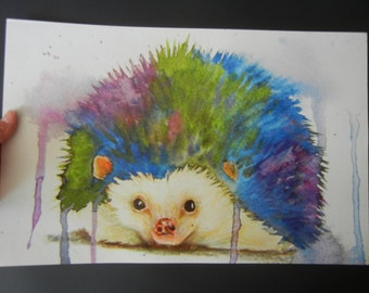 "POSTER  ""Rainbow Hedgehog""  Watercolor"