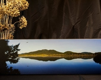 Panoramic photograph of Bald Eagle in Adirondack Park by Janene Bouck, 2013
