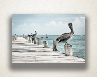 Ocean Wharf Pelicans Canvas Art, Ocean Wharf Wall Art, Ocean Canvas Print, Artwork, Photograph, Canvas Print, Home Art, Wall Art Canvas