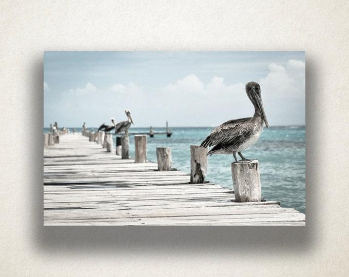 Ocean Wharf Pelicans Canvas Art, Ocean Wharf Wall Art, Ocean Canvas Print, Artwork, Photograph, Canvas Print, Home Art, Wall Art Canvas