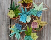 Wedding Favors - Bulk Felt Succulents in Tiny Clay Pots - Sets of 10 - Faux Succulents - With or Without Twine Hanger