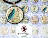 75% OFF SALE BIRDS and Butterflies Digital Collage Sheet 1 Inch Circle Digital Collage Birds Cage Bottlecaps Pendants Magnets Instant Downlo