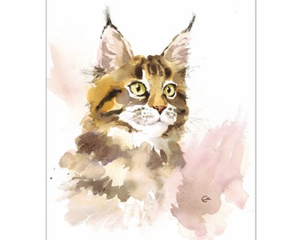 Maine Coon - Original Watercolor Cat Painting 9x12 inches Cats Pets Animals