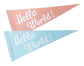 Hello World - Single Flag for Nursery Room, Kids Decor, Celebrate Baby Shower, Gender Reveal