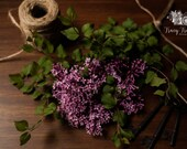 Still Life Photography, Floral Photography, Rustic Home Photography, Vintage Decor Photography, Lilac