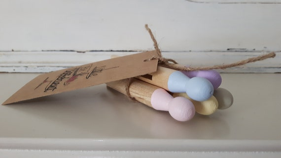 Vintage retro style painted dolly pegs.