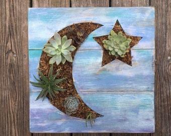 Succulent Planter, Moon and Stars, Shabby Blue, Vertical Garden, Living Wall Succulent Frame,