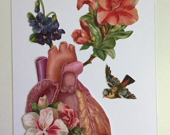 Anatomical Heart collage #6